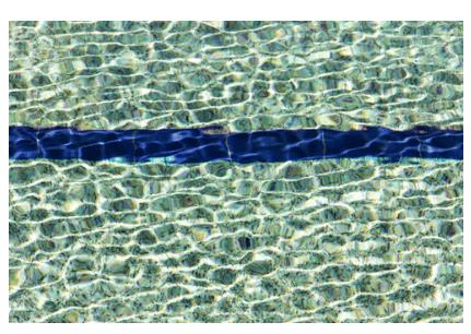 pool maintenance, pool chlorine